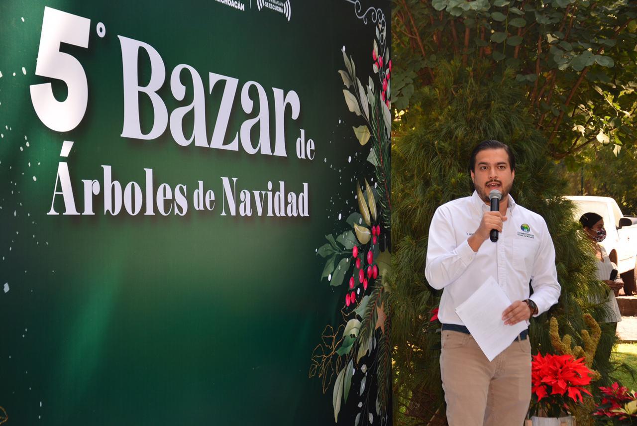Michoacán, cuarto lugar en producción de árboles de Navidad a nivel nacional. Noticias en tiempo real