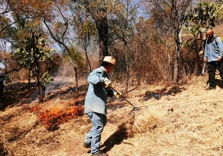 Realizan brechas corta fuego en Cerro Punhuato. Noticias en tiempo real
